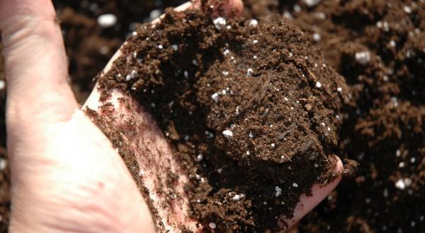 Compost y Sustratos